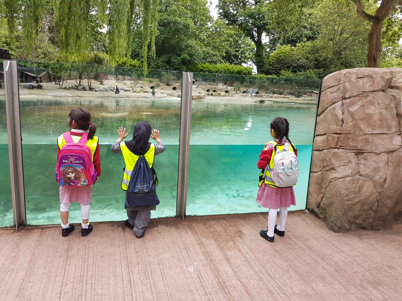 london zoo The latest tweets from zsl london zoo (@zsllondonzoo) the official twitter home of zsl london zoo london's wildest day out add us on instagram @zsllondonzoo london, uk.